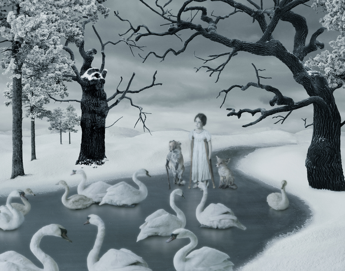 Among the Swans